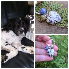 Dalmation Jasper, Unakite and Sodalite crystal pet charm Pet Charm, Jasper, Etsy Seller, Charms, Healing, Crystals, Pets, Unique Jewelry, Creative