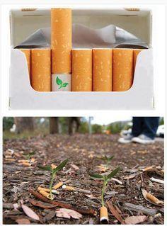 éco mégot de cigarette