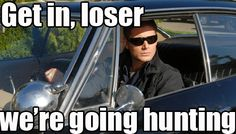 Get in, loser we're going hunting
