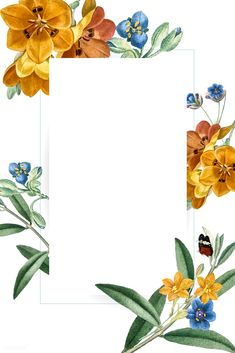 Flora Background, Flower Background Wallpaper, Flower Backgrounds, Background Patterns, Wallpaper Backgrounds, Rose Frame, Flower Frame, Plant Illustration, Floral Border