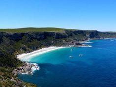 Kangaroo Island - South Australia. Interestingly, it is more known for it's abundance of Koalas and Seals.