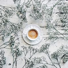 Coffee | Lily Rose | VSCO