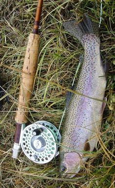 Check out these tips and tricks for catching trout - and then techniques on how to prepare it!