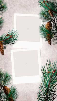 Festive blank Christmas mobile wallpaper | premium image by rawpixel.com / PLOYPLOY Instagram Background, Instagram Frame, Instagram Blog, Instagram Story Ideas, Polaroid Template, Frame Template, Story Template, Templates, Leaves Wallpaper Iphone
