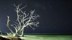 Mayan Quintana Roo Timelapses by Nicolas Gutierrez Wenhammar. Please watch fullscreen and HD