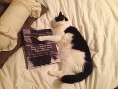 Tanya's Comprehensive Guide to Feline Chronic Kidney Disease - CKD - the Book