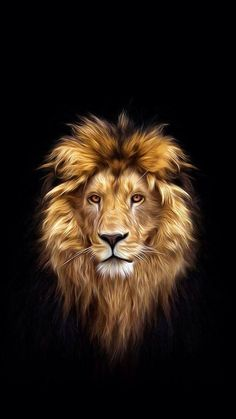 Find Portrait Beautiful Lion Dark Oil Paints stock images in HD and millions of other royalty-free stock photos, illustrations and vectors in the Shutterstock collection. Art Roi Lion, Lion King Art, Lion Art, Lion Of Judah, Lion Images, Lion Pictures, Lion Wallpaper, Animal Wallpaper, Beautiful Lion