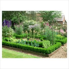 Cutting garden with Allium seedheads, Delphiniums, Lathyrus - Sweetpeas - GAP Photos - Specialising in horticultural photography