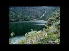 Parque natural de los alcornacales