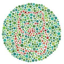 """Képtalálat a következőre: """"color blind test for kids with animals"""" Color Blindness Test, Test For Kids, Color Studies, Charts, Blinds, Preschool, Glow, Outdoor Blanket, Study"""