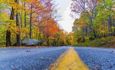 The road to Fall Photo by Greg Taylor — National Geographic Your Shot