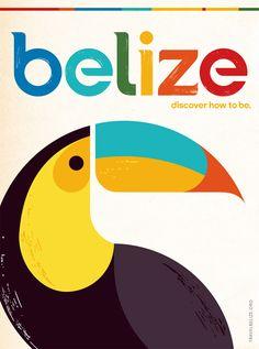 Belize Toucan Colorful Retro Vintage Travel Poster Art Print by vintagevault Poster Art, Retro Poster, Poster Prints, Artwork Prints, Art Print, Belize Tourism, Belize Travel, Belize Honeymoon, Art And Illustration