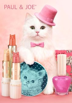 i want one of these cat lipsticks so bad!!! although i would hate to ruin the cuteness!