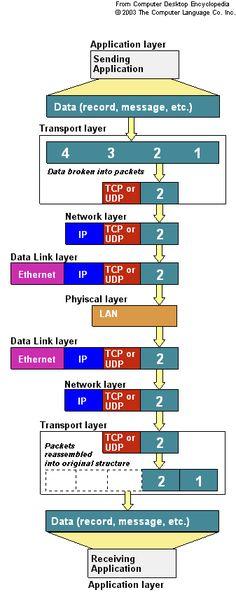 Networking OSI TCP IP UDP ARP DNS