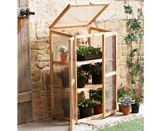 Mini Greenhouse Kit for Indoors or Outdoors - Backyard Landscaping