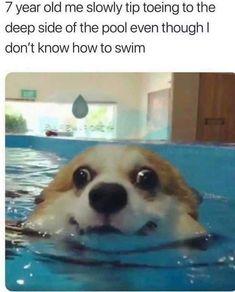 Really Funny Memes, Stupid Funny Memes, Funny Tweets, Funny Laugh, Funny Relatable Memes, True Memes, Funny Stuff, Fuuny Memes, Sarcastic Memes