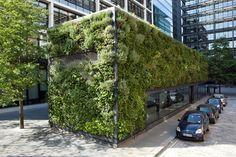 biomimicry architecture - Google Search