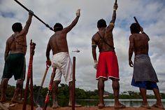 Brasilien: Landerfolg indigener Völker wohl eher von kurzer Dauer