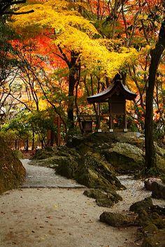 上賀茂神社の紅葉 - 写真日和