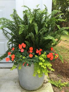 Best 15 Stunning Summer Planter Ideas to Beautify Your Home Atemberaubende Sommer-Pflanzer-Ideen Fern Planters, Outdoor Planters, Flower Planters, Garden Planters, Flower Pots, Outdoor Gardens, Potted Ferns, Container Flowers, Container Plants