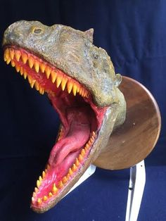 GIGANOTOSAURUS HEAD    260×130×340 1800g   Touch the image Click on the image