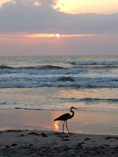 Sunrise on Cocoa Beach, FL