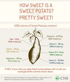 How-Sweet-Is-A-Sweet-Potato