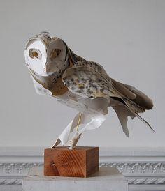 love this pretty #paper #white #owl