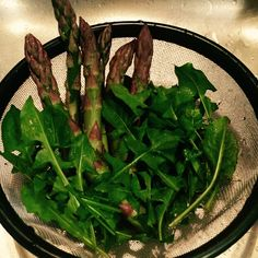 My first meager offerings from the big garden, a smidge of asparagus and dandelion greens.  Spring was quick to arrive and is ...