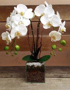 arranjo artificial orquídea silicone com 2 galhos vaso vidro Orchid Flower Arrangements, Orchid Planters, Orchid Centerpieces, Orchid Pot, Ikebana, Artificial Orchids, Dendrobium Orchids, Indoor Flowers, Diy Flowers