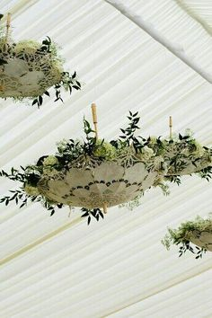 This has possibilities. White paper umbrellas with cedar boughs, lights and ??