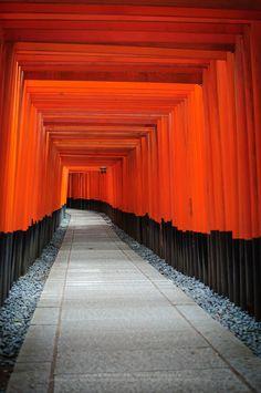 Red Torii, Japan
