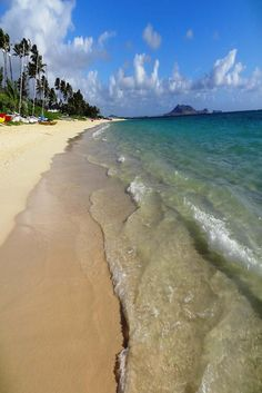 One of many splendid beaches in Hawaii. Kailua Hawaii, Maui, Presque Isle State Park, Attraction, Best Family Beaches, Oahu Beaches, Best Flights, Tour Tickets, Ways To Travel
