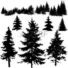 Detailed vectoral pine tree silhouettes Stock Vector