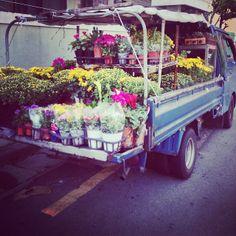 .@blossom__h | #꽃 + #트럭 | Webstagram