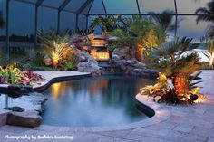 A tropical transformation! http://www.poolspaoutdoor.com/pools/inground-pools/articles/pool-makeovers-before-and-after.aspx#