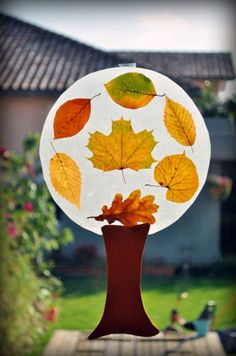 Great for fall. Collect leaves, place on clear contact paper and seal, then cut into circle shape, and attach to a construction paper tree trunk.