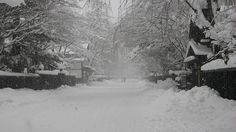 Kakunodate in winter - stunning!