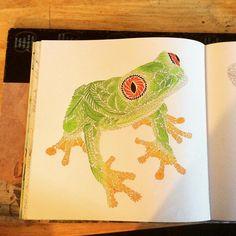 """#froggy #milliemarotta #animalkingdom #tropicalworld #adultcolouring…"