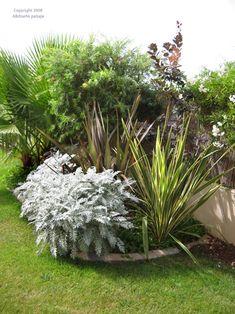 Jardín remodelado y terminado hace dos días: fotos y comentarios - Página 8 - Foro de InfoJardín