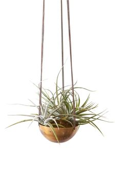 Set of 5 Hanging Planter/ Basket/ hand spun copper by INSEKDESIGN