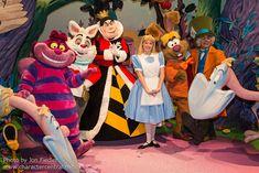 Alice In Wonderland Characters.
