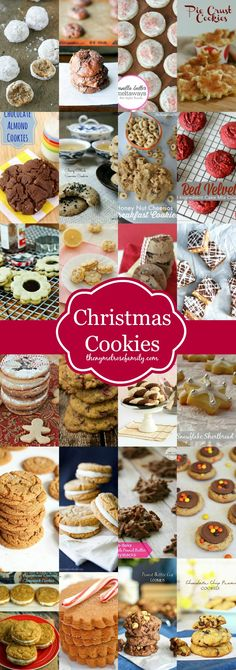 Christmas Cookies! This list includes everything from chocolate to gluten free!