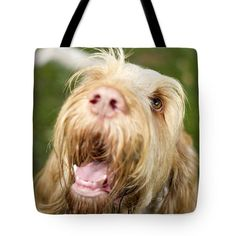 Orange And White Italian Spinone Dog Head Shot Tote Bag by Heidi Anne Morris