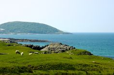 The Clew Bay Archaeological Trail takes in the village of Murrisk in County Mayo, on the west coast of Ireland Clare Island, Grace O'malley, West Coast Of Ireland, County Mayo, Erin Go Bragh, Ireland Travel, Home And Away, Archaeology, Trip Planning