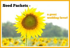 """Having a """"green"""" wedding? Hate wedding favors that are junk? Wedding favor seed packets for sunflowers and assorted wildflowers might be perfect for you!"""