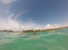 swimming with turtles // Akumal Beach