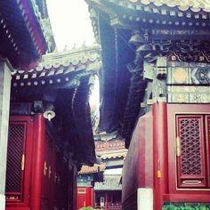 Rooves of the temples in Yong He Gong, Tibetan Buddhist temple, Beijing