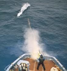 Norway's annual whaling.- Last year (2011) 533 whales were slaughtered. @SeaShepherd #defendconserveprotect