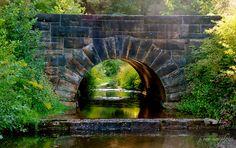 light reflections ~ Mill Creek Park, Ohio